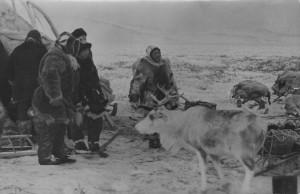 История Чукотки. Хозяйство коренного населения.