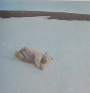 животное белый медведь